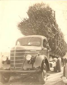 My grandfather's cane truck, circa ~late 1930s Pointe Coupee Parish, LA
