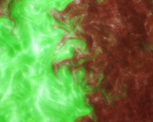 Light microscopy image of a normal 'Fremyella diplosiphon' colony (green, left side) adjacent to a 'F. diplosiphon' mutant capable of only producing the light-harvesting pigment phycoerythrin (red, right side), growing on an agar plate in red light.